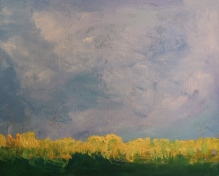 Study for Rapeseed