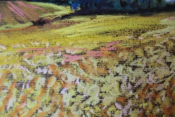summer-field-soft-pastels-30-x-20-close-up