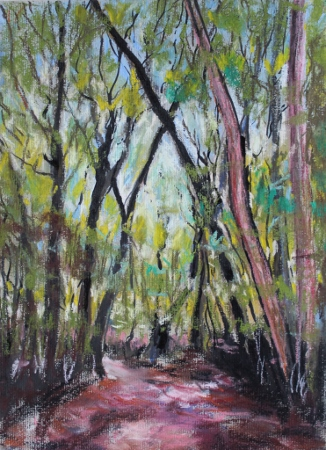 Trees Impression169K