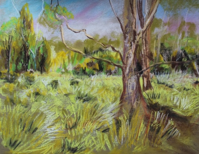 Trees and grasses 141K